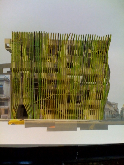 Greenwall_mit_ethan_lacy_2010_